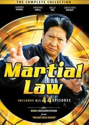 Martial Law - Der Karate Cop