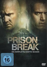 Prison Break Serienjunkies